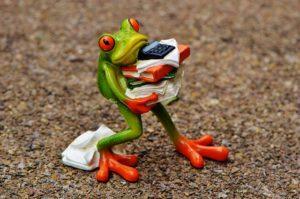 Keď ťa chytí stres, tak nebuď žaba :)